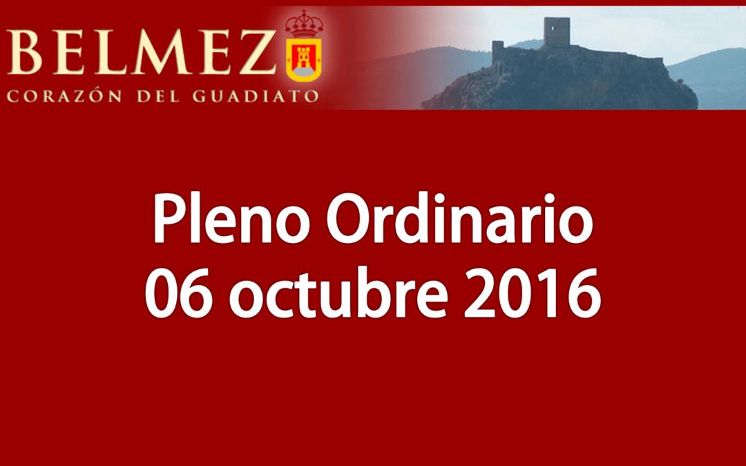 Vídeos de la sesión plenaria del día 6 de octubre.