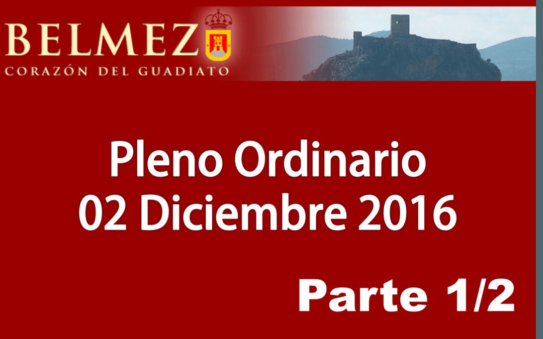 pleno_ordinario_2_diciembre_2016_1_de_2.png
