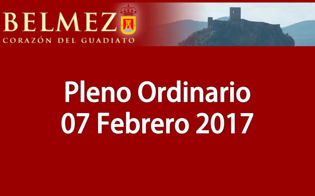 Vídeos de la sesión plenaria del día 7 de febrero 2017