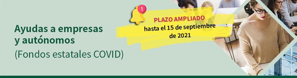Ampliación del plazo para ayudas de solvencia hasta el 15 de septiembre 2021.